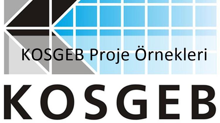 kosgeb proje örnekleri