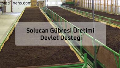 Photo of Solucan Gübresi Üretimi Devlet Desteği