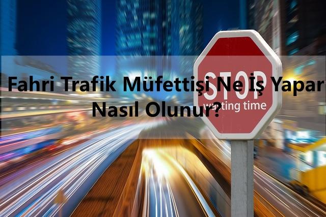 fahri trafik mufettisi