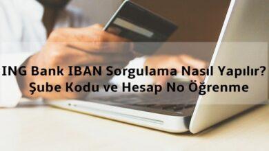 ING Bank IBAN Sorgulama Nasıl Yapılır? Şube Kodu ve Hesap No Öğrenme